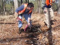 Image of two men digging into soil and taking measurements as Wetland Delineators